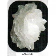 Calcite Powder(Calcium)