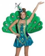 Birds Costume Dress