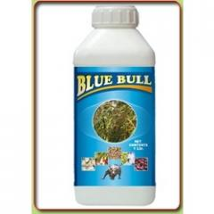 Blue Bull (Liquid Copper)