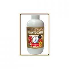 Planto Zyme (Sea Weed Extract)