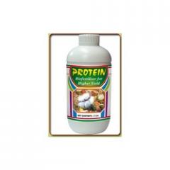 Protein (Botanical Extract)