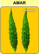 Hybrid Bitter Gourd Seed(Amar)