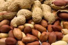 Golden Peanuts