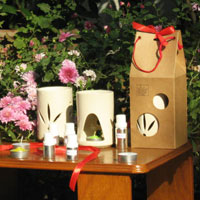 Aromatherapy Vaporizers