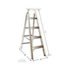 Emirates Dual Purpose Ladder