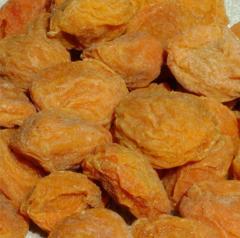 Apricot Turcail
