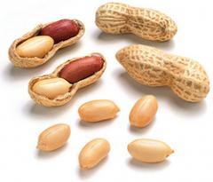 Groundnut/Peanut