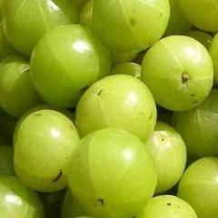 Fresh fruits - Amla