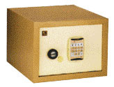 Major Electronic Safe (Standard And FR)