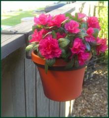 Flowerpots Holder