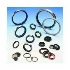 Oil Seals, O-Rings