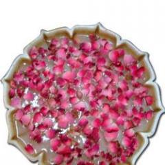 Jaipur Bowl Of Roses
