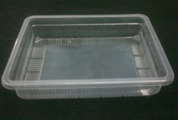 Rectangle Container (Half KG New)