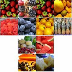 Seasonal Vegetable Fruits