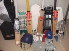 Accessories for cricket
