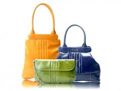Handbags, Wallets, Purse, File case, Coin pouch,