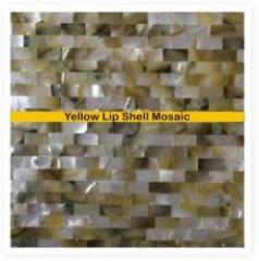 Yellow Lip Shell Mosaic