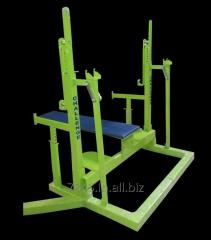 Squat Cum BP Stand For Powerlifting