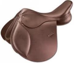 Brown Horse Saddle