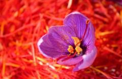 Saffron - Khanday & Co