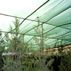Agro Shed Nets