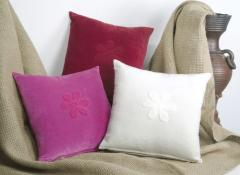 Velvet Solids with Embroidery Cushions