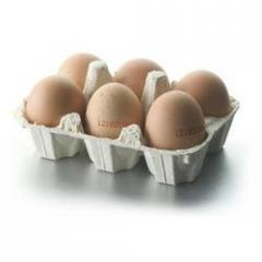 Six Egg Tray