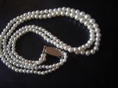 Buckles jewellery