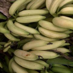 Nendran Banana