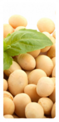 Soyabeans