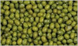 Green Moong Sprouts