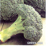 F1 Hybrid Broccoli