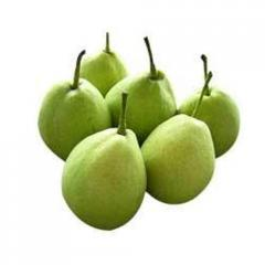 Indian Pears