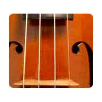Musical Instrument Gut Strings