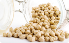 Indian Chickpea