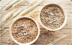Sesame Seed Natural
