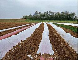 Agri Crop Covers
