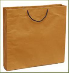 Regular Shopping Bag