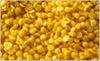 Yellow Lentil (Masoor)