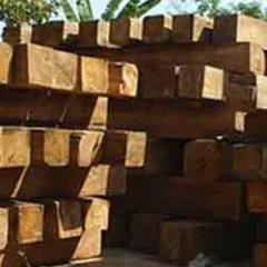 Babool Wood Timbers