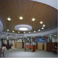 Minral Fiber Armstrong Ceiling