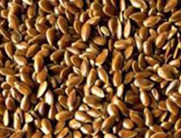 Flax (Linseed)