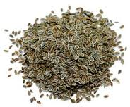 Indian Dill