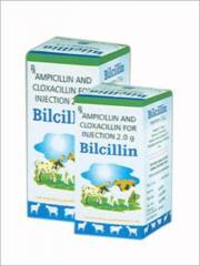 Amoxycillin Cloxacillin Injection