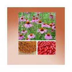 Natural herbs extracts