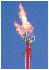 Bio-Gas Flare System