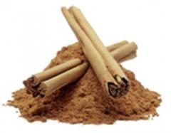 Cinnamon (Cinnamomum verum)