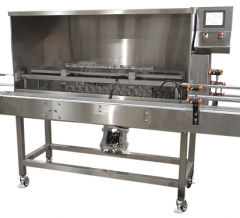Automatic Linear Bottle Rinsing Machine