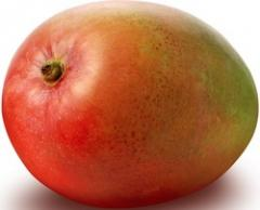 Quality Indian Mangoes