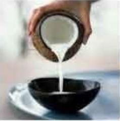 Dessicated Coconut Milk